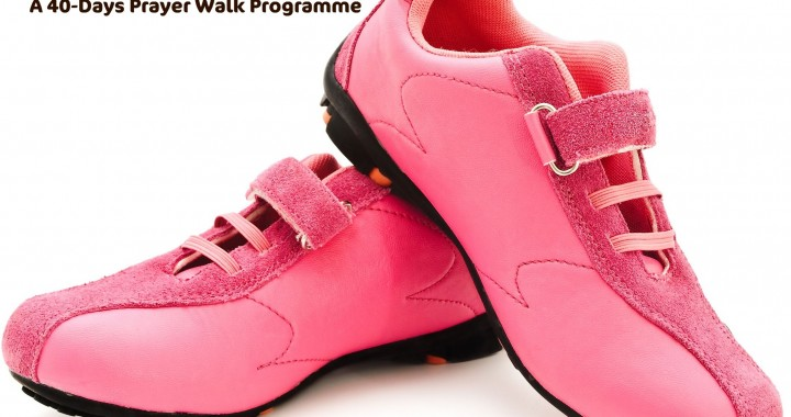 Pink Shoes 40 Days