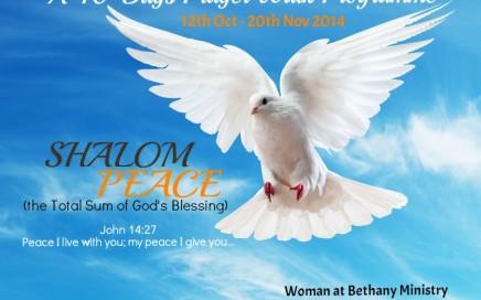 Shalom Flyer